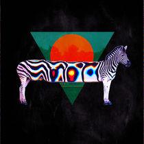Zebra by Ali GULEC