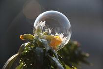 gefrorene Seifenblasen - Frozen Bubble  by frakn