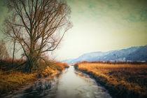 Die Stockacher Aach bei Bodman im Winter von Christine Horn