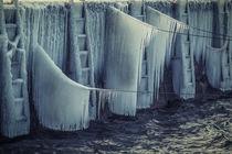 Eiszeit in Bodman am Bodensee von Christine Horn