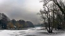 Niepkuhlen im Winter von maja-310