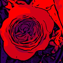 Red Rose 3 by Robert H. Biedermann