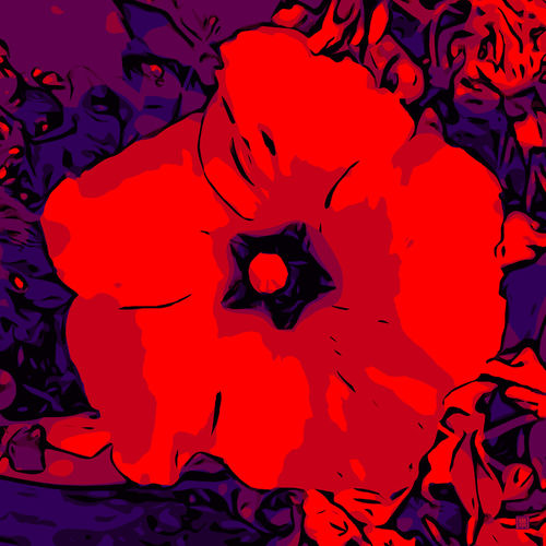 Blumenbilder-red-blue-v027