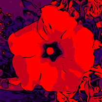 Red Hibiskus 3 by Robert H. Biedermann