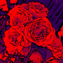Blumenbilder-red-blue-v029
