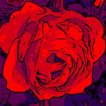 Blumen Poster Red Rose - welikeFlowers by Robert H. Biedermann