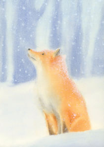 Fox in the snow von zapista