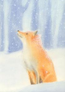 Fox in the snow by zapista