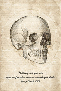 Skull Quote By George Orwell by olaartprints
