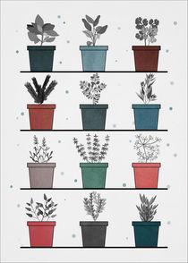 Herbs von Print Point