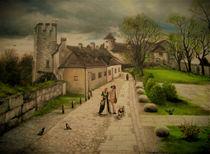 Burghausen, die mittelalterliche Festung by Apostolescu  Sorin
