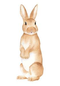 Rabbit Watercolor von olaartprints