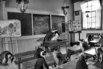In der Schule von garrulus-glandarius