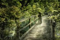 Rückkehr nach Eden by Simone Wunderlich