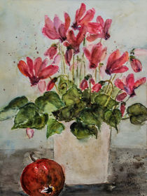 Alpenveilchen - red Cyclamen by Chris Berger