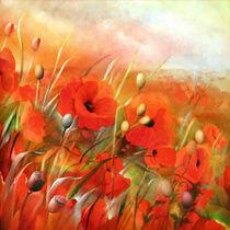 Mohnfelder von Annette Schmucker