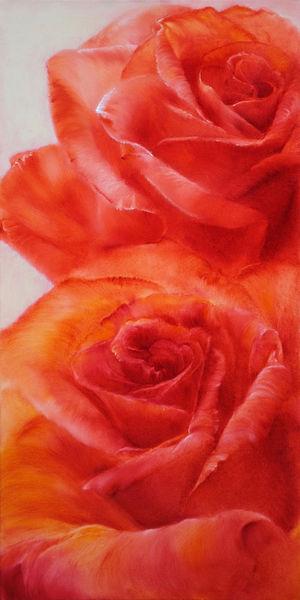 0707-rosen
