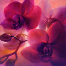 """Orchideen"" by Annette Schmucker"