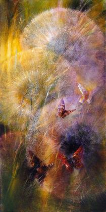 Verzaubert by Annette Schmucker