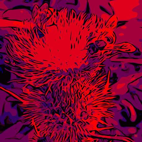 Blumenbilder-biene-red-blue-v025
