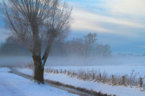 Ruhrwiesen im Winter by Bernhard Kaiser