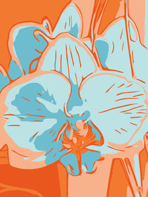 Blumen Poster Orchidee orange - welikeflowers von Robert H. Biedermann