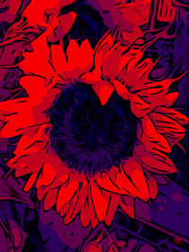 Blumen Poster Red Sunflower - WelikeFlowers by Robert H. Biedermann