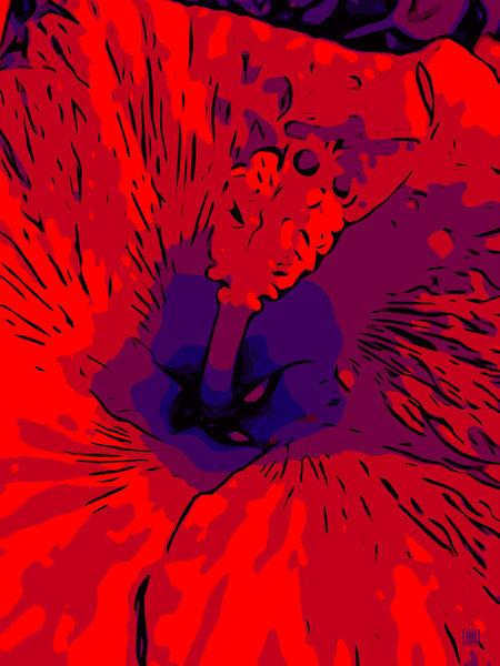 Blumenbilder-red-blue-100x75-10