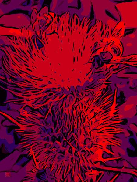 Blumenbilder-red-blue-100x75-12