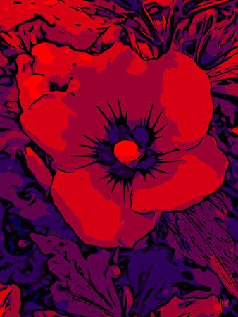 Blumenbilder-red-blue-100x75-14