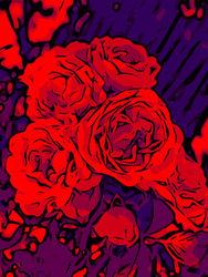 Blumenbilder-red-blue-100x75-17