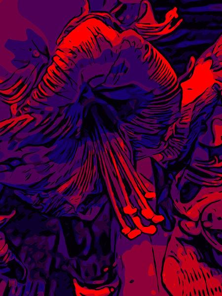 Blumenbilder-red-blue-100x75-18
