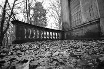Dark Autumn  von Susanne  Mauz