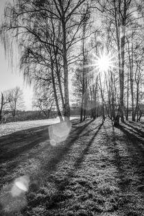 Licht und Schatten by René Lang