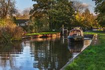 Passing Through Woolhampton Lock by Ian Lewis
