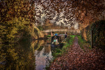 Autumnal Towpath by Ian Lewis