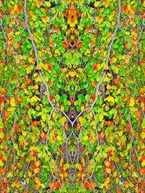 Herbstlaub von kattobello