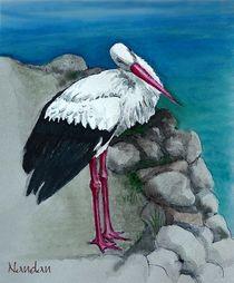 White Stork by Nandan Nagwekar