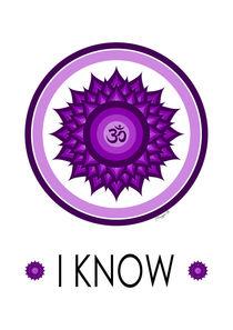 Crown Chakra - Yoga Meditation Symbol von Maggie B. Design