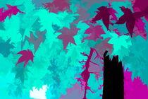 Ahornblätter by mario-s