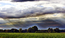 Landschaft-1 by maja-310