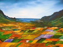 The fields of Dingle von Conor Murphy