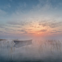 Morgennebel by Andreas Hoops