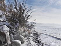 Gefrorener Strand bei Ahrenshoop auf dem Darß von dresdner