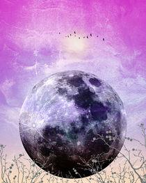 MOON under MAGIC SKY VII by Pia Schneider