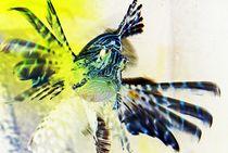 flying fish... by loewenherz-artwork