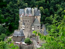 Burg Eltz  castle near Mosel River valley, Germany by ambasador