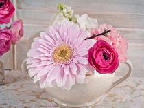 Ranunculus Pink by Ramona Wassenberg