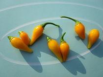 Gemüsechili von Birgit Knodt