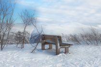 Winter von Iris Heuer